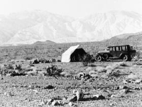 Annie Field Site